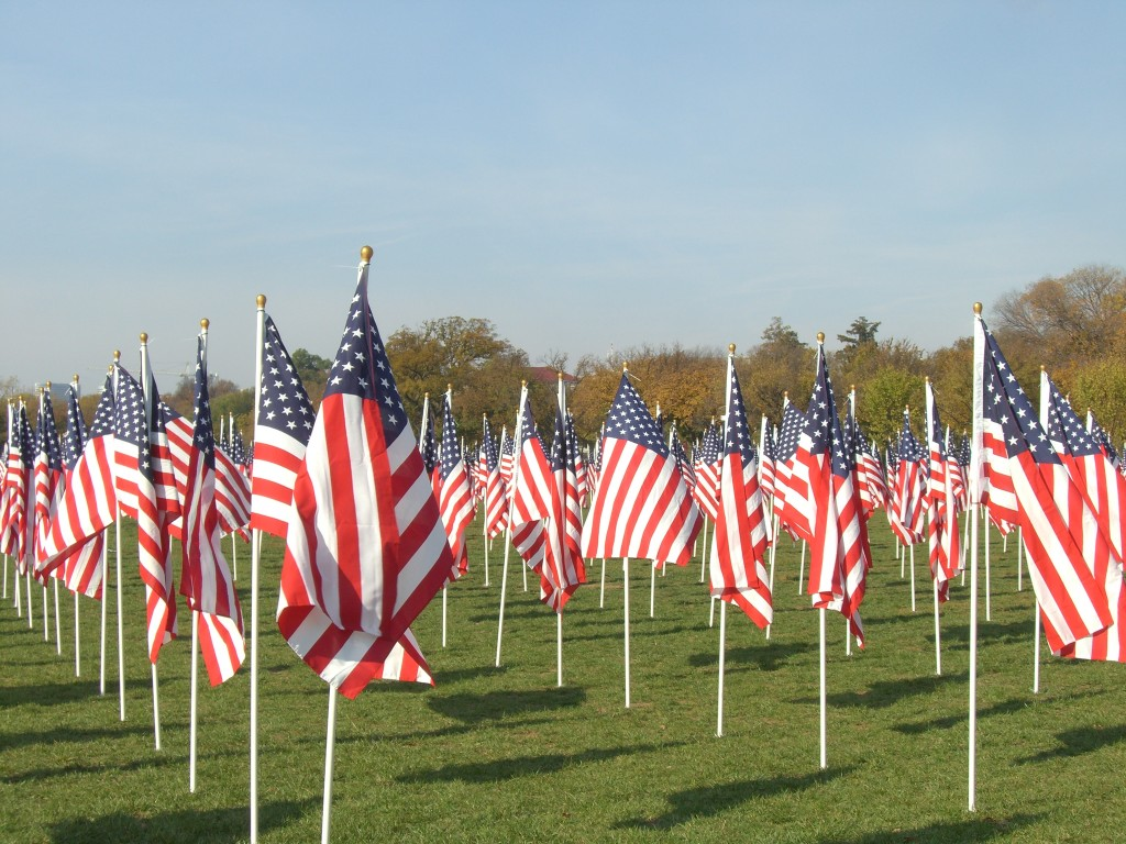 Flags on the National Mall